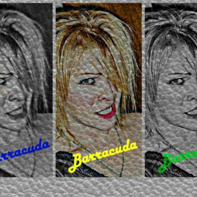 "Barracuda ""Heart"" cover band"
