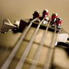 4 string MF