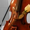 ViolinVendetta