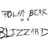 Polar Bear In A Blizzrd