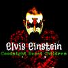 Elvis Einstein