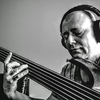 Steven Gibson Electricbass