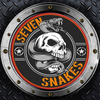 SSNAKES