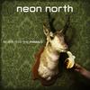 Neon North
